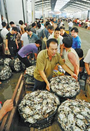 宁波中心城区水产批发市场年内全部迁至路林